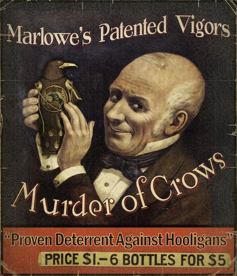 bi-propaganda-murder-of-crows